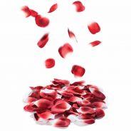 Bonbons Rose Petals Explosion