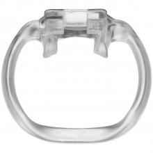HolyTrainer V4 Ring for Chastity device  1