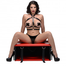 Master Series Queening Sex Chair