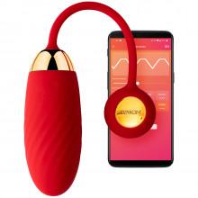 Adrien Lastic Smart Dream Vibrator Egg  1